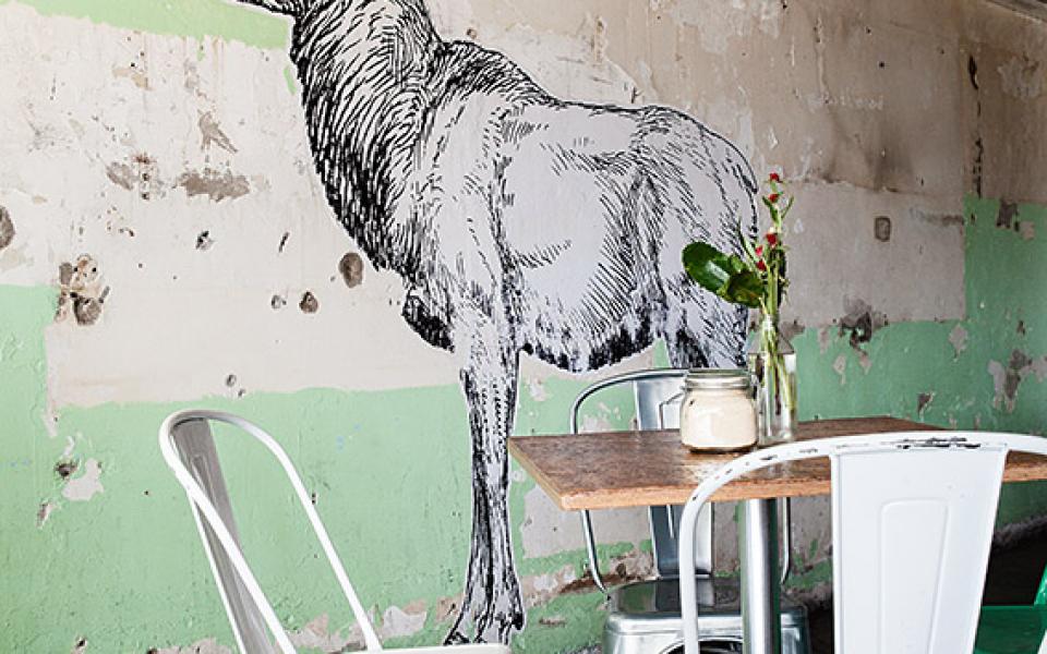 Elk Cafe, Gold Coast